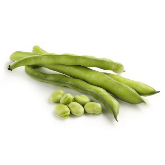 Fresh Organic Board beans
