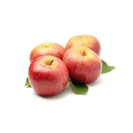 Annurca medium / large apple- 1 kg