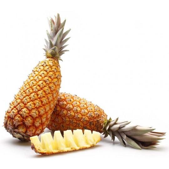 Ananas Pain de Sucre via aerea 1 frutto