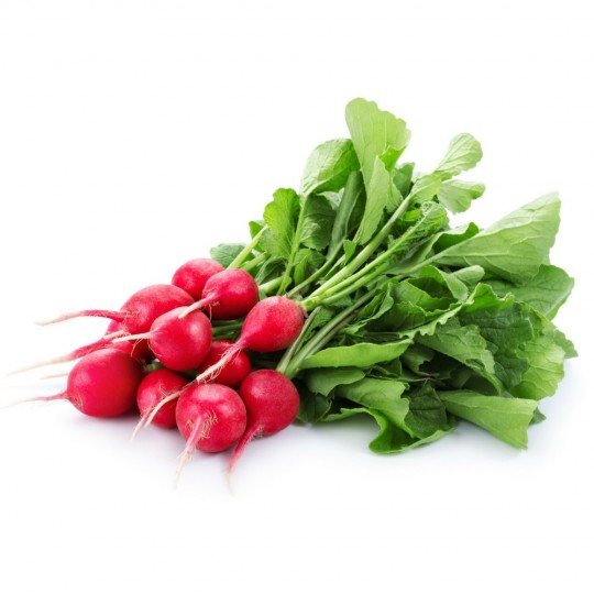 Ravanelli (rapanelli) rossi biologici Almaverde bio