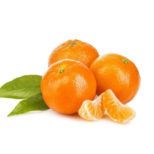 Clementine monreal Almaverde bio: ordinale ora su fruttaweb!