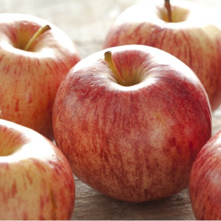 Proprietà e benefici della buccia di mela Gala Biologica | FruttaWeb.com