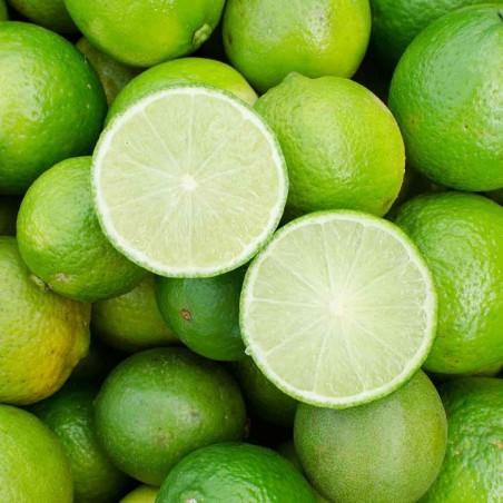 Lime Biologico si differenza per la quantità di vitamina c