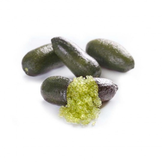 Lime fingers (or Australian lime) - 200 gr