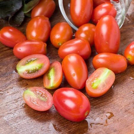 Pomodoro datterino Biologico Almaverde Bio ordinalo subito su fruttaweb!