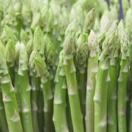 Asparagi Verdi Biologici Almaverde Bio: Acquista Online con un Click