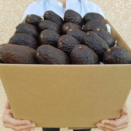 Box di Avocado Hass pronto da mangiare: Acquista Online con un Click su FruttaWeb
