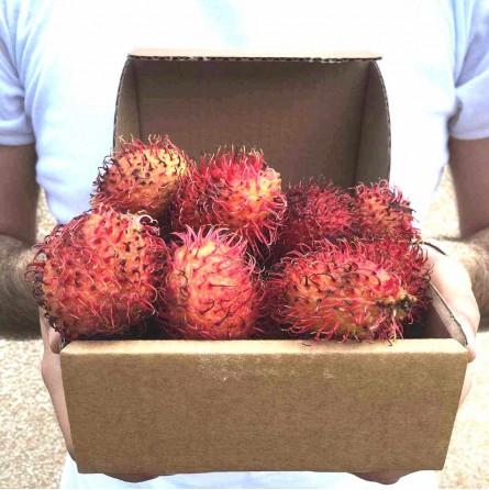 Rambutan in Cassetta: Acquista Online con un click su FruttaWeb.com
