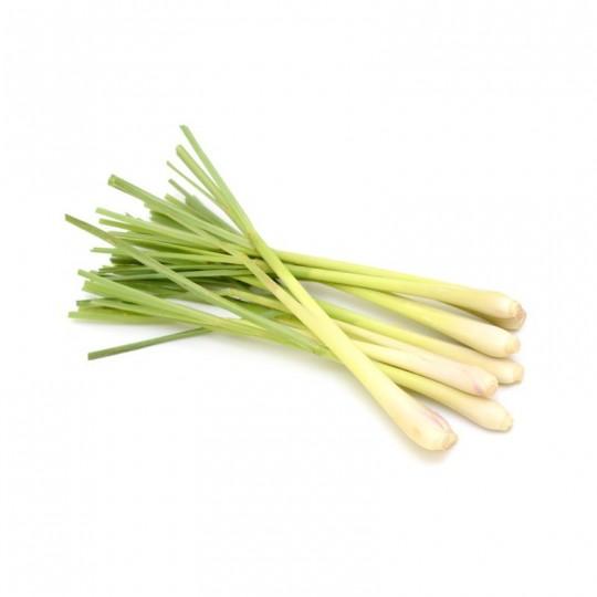 Citronella (Lemongrass): Acquista Online con un Click su FruttaWeb.com