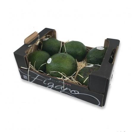Cassetta di Avocado Siciliano: Acquista Online con un Click su FruttaWeb.com