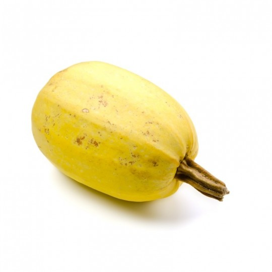 Spaghetti Squash - 1 fruit of about 2,5 / 3 Kg
