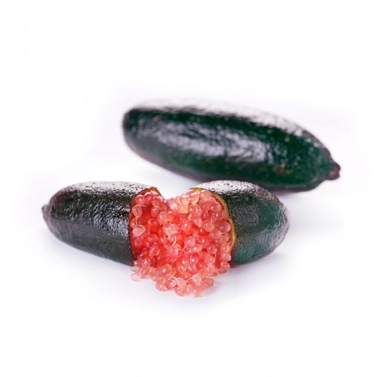 Finger Lime Rosa
