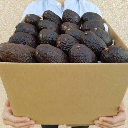 Cassetta di Avocado Hass, pronto da mangiare: Acquista Online su FruttaWeb.com