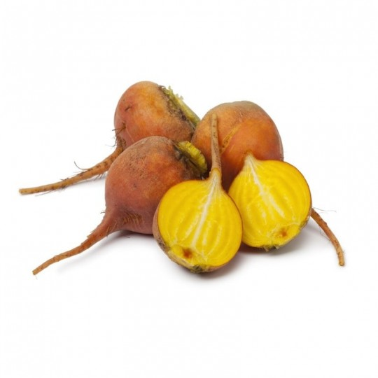 Yellow Beetroot