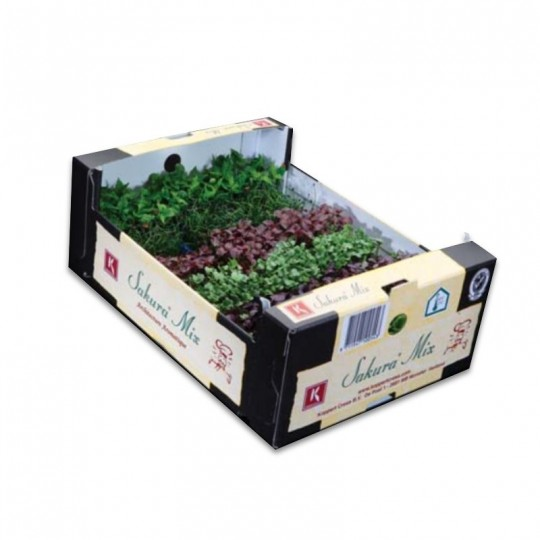 Sakura Mix Koppert Cress