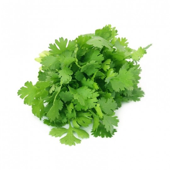 Coriander fresh - 20 gr in tray