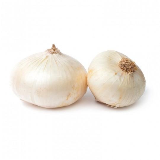 Cipolla bianca piatta fresca: Acquista Online su FruttaWeb.com