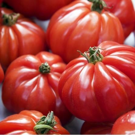 Pomodoro cuore di bue Almaverde Bio - acquista online su FruttaWeb in tavola