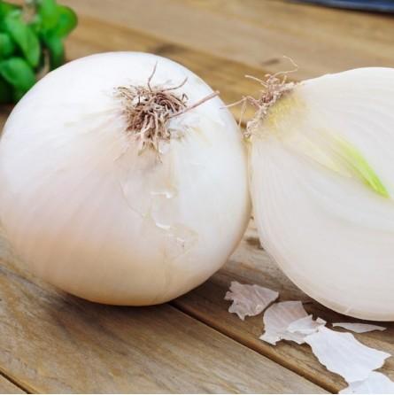 Cipolla bianca Almaverde Bio: Acquista online su FruttaWeb.com proprietà
