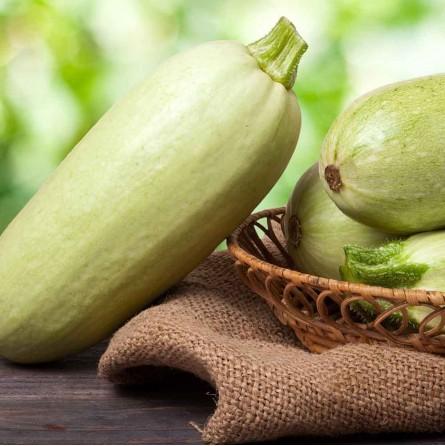 Ordina ora le zucchine verdi chiare biologiche Almaverde Bio!