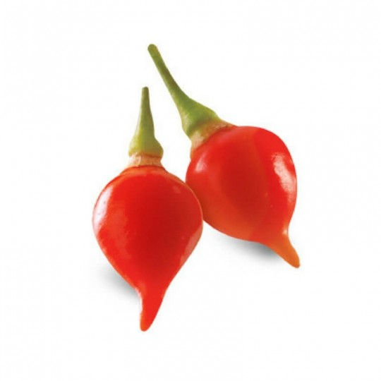 Chili red fresh long
