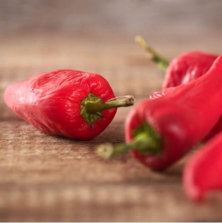 Peperoncino Naga Morich Rosso Fresco: Acquista Online