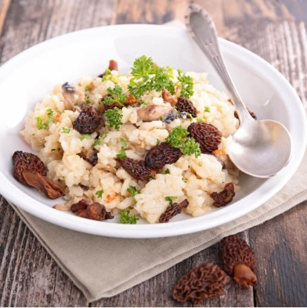 Funghi secchi Spugnole (Morchella Conica): in vendita su FruttaWeb.com
