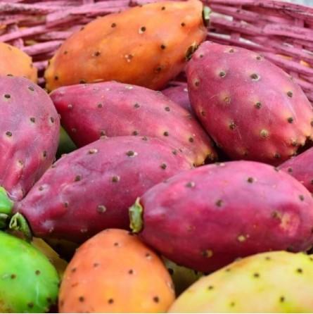 Fichi d'India Biologici Almaverde Bio: Acquista Online su FruttaWeb.com