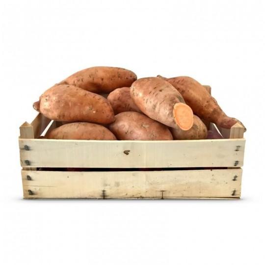 Patate dolci Pasta Arancione in Cassetta: Acquista Online