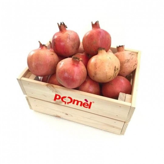 Fresh Pomegranate 10 kg