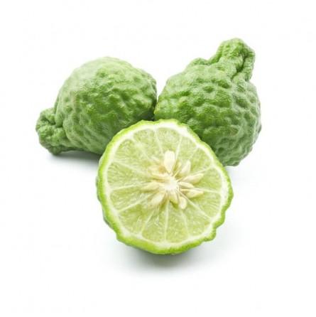 Lime combava (o kaffir): Acquista Online su FruttaWeb.com