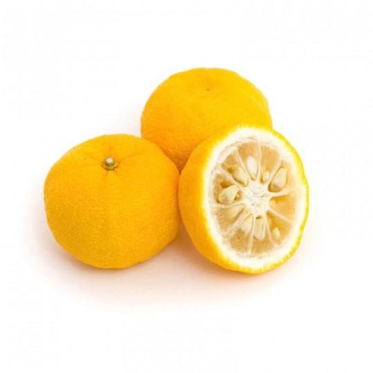 Limes yuzu