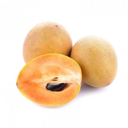 Sapodilla (Sapotiglia): acquista ora su FruttaWeb.com