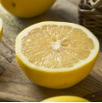 Pompelmo Bianco - 1 frutto: acquistalo ora su FruttaWeb.com