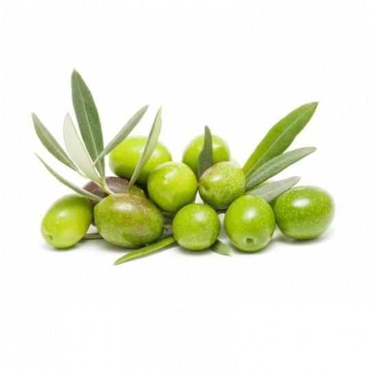 Olive Fresche Intosso di Casoli: Acquista Online su FruttaWeb.com