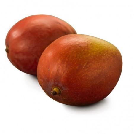 Mango Tommy Atkins Acquista Online FruttaWeb.com