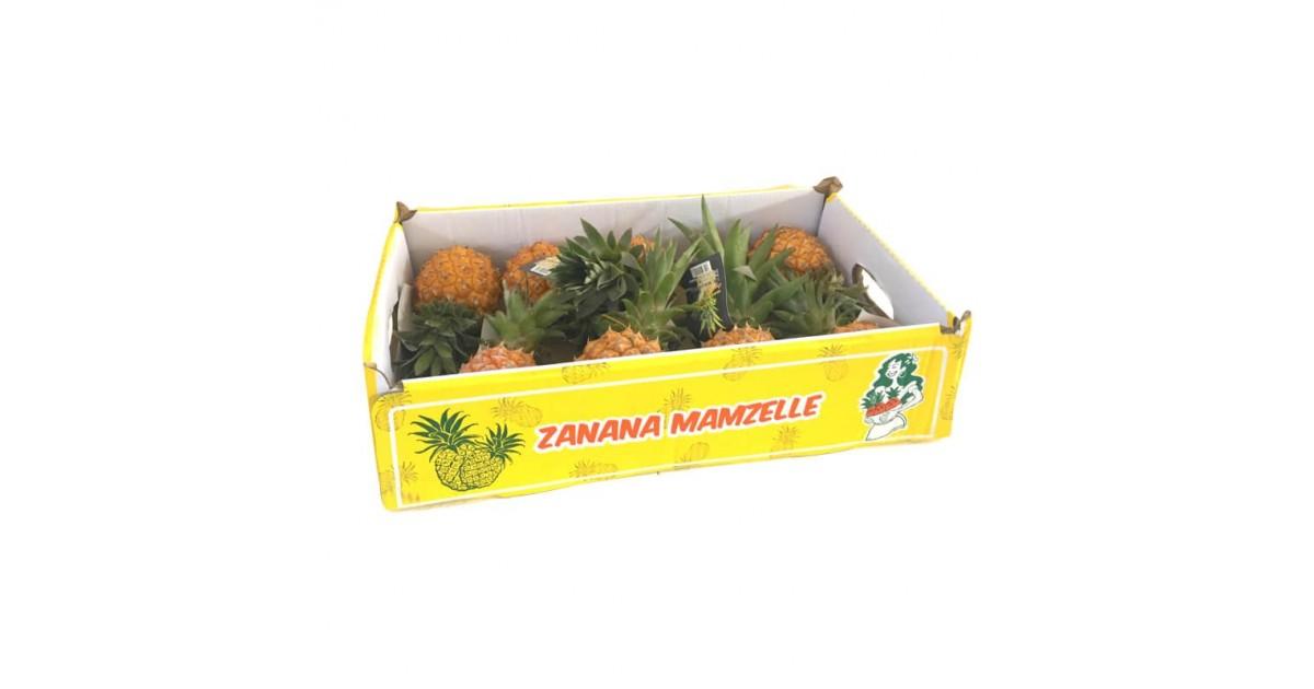Ananas Baby Extra Via Aerea Acquista Online FruttaWeb