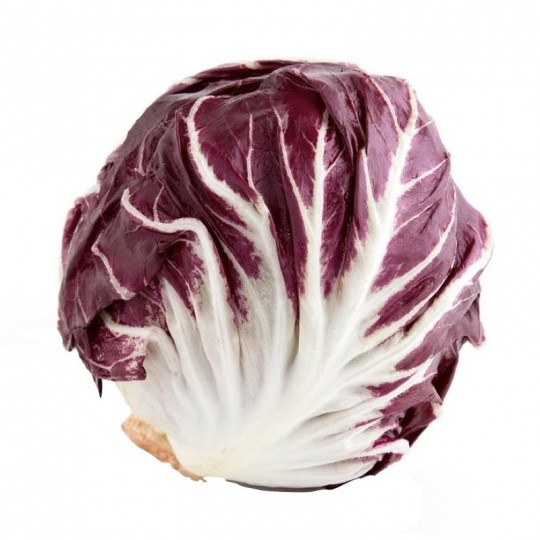 Red chicory of Chioggia