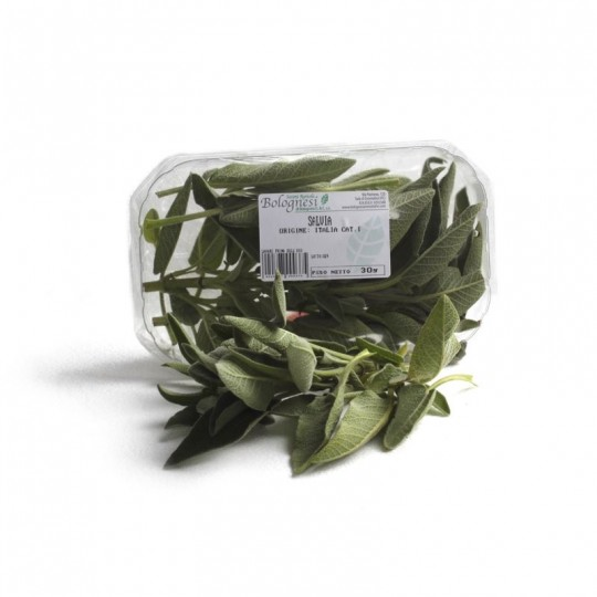 Sage fresh - 20 gr in tray