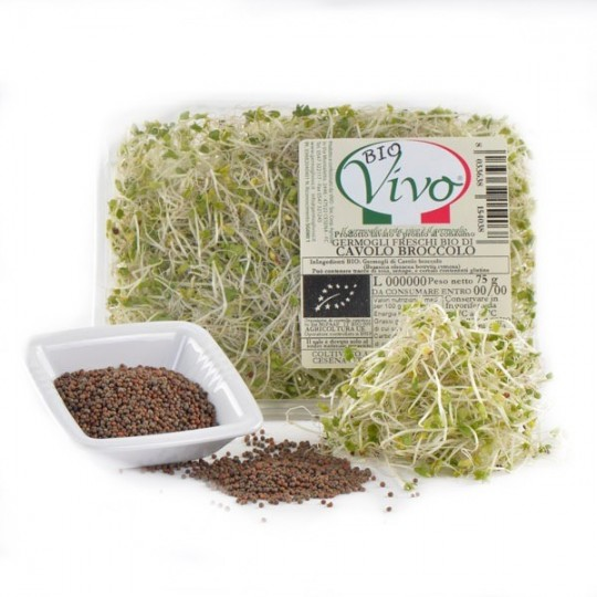 Cabbage broccoli's sprouts - 75 gr
