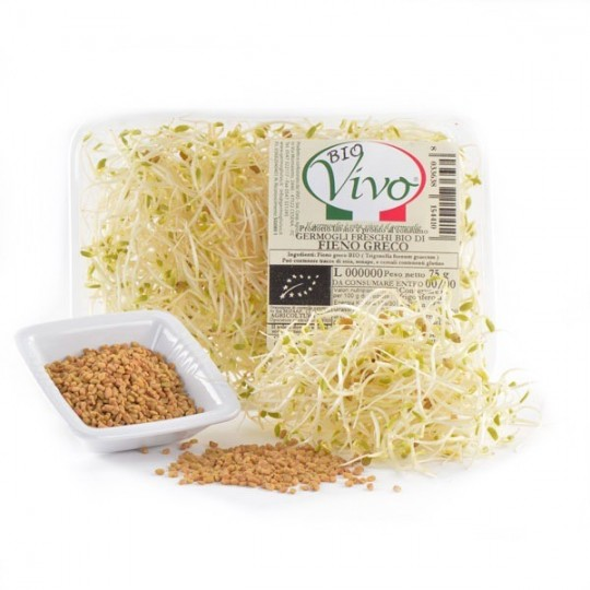 Greek hay's sprouts - 75 gr