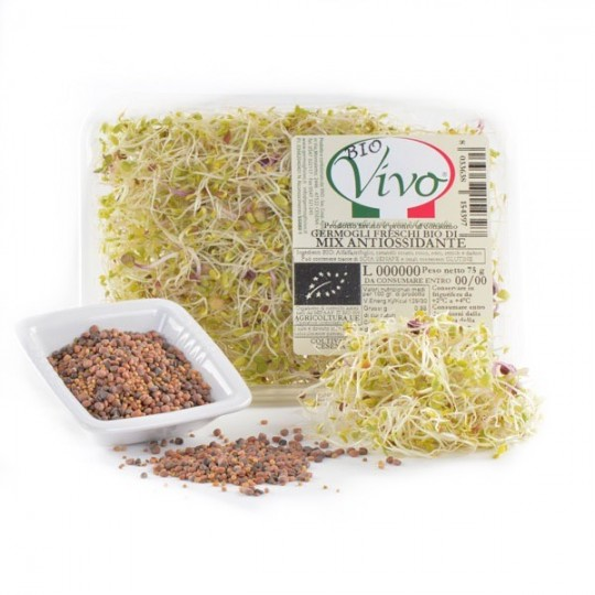 Antioxidant mix's sprouts - 75 gr
