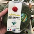 Zucca Delica Zerbinati del Nicaragua
