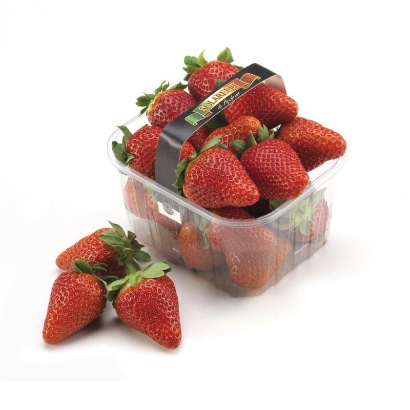 Fragole candonga della basilicata acquista online for Frutta online