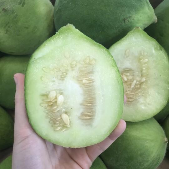 Melone Cetriolo Carosello (Barattiere) Acquista Online su fruttaweb.com