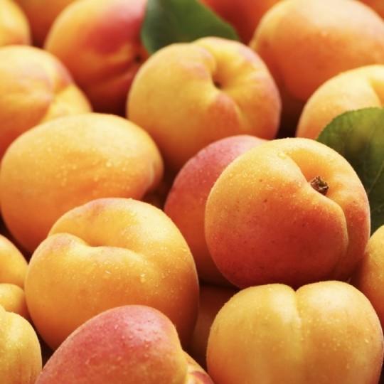 Albicocche Fresche Acquista Online su fruttaweb.com