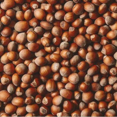 Nocciole Naturali dei Nebrodi Acquista Online su fruttaweb.com