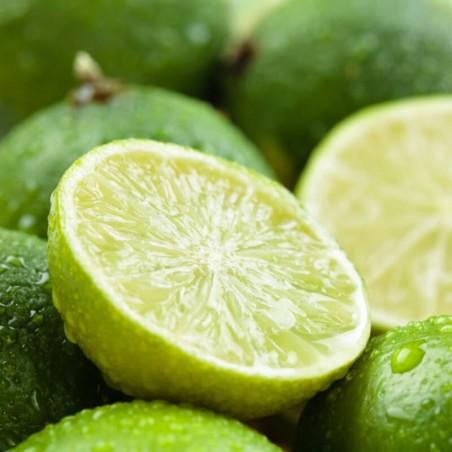 Purea di Lime Acquista Online su fruttaweb.com