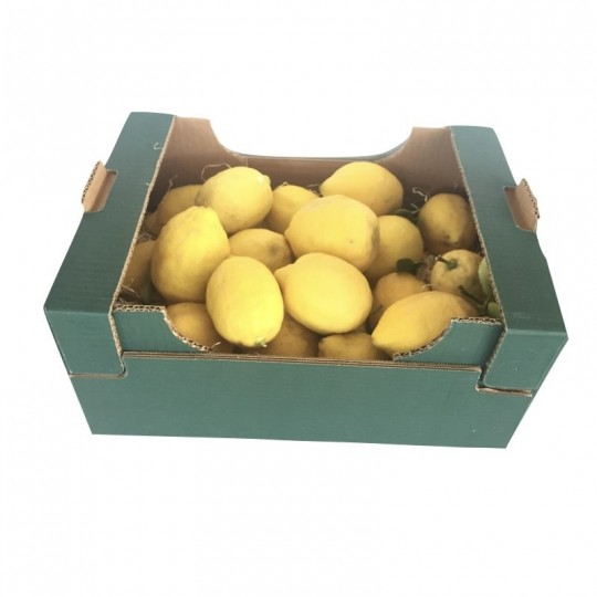 Natural lemons with leaf for sale online on FruttaWeb.com