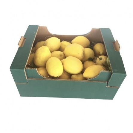 Limoni Naturali affogliati in vendita online su FruttaWeb.com